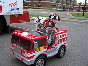 sparkles-fire-safety-dog-34
